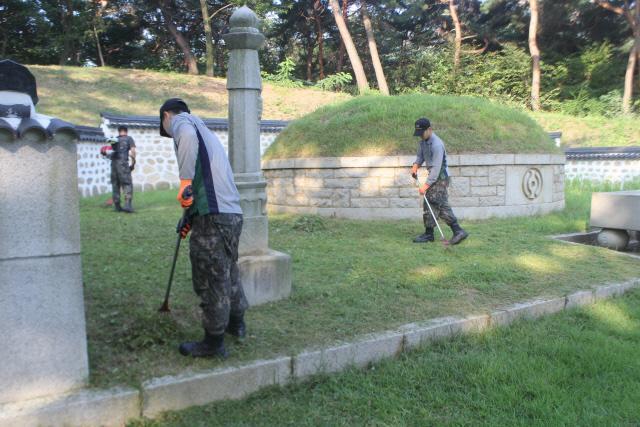 육군56사단 용마부대 장병들이 애국선열 묘역을 찾아 정화활동을 하고 있다.   부대 제공