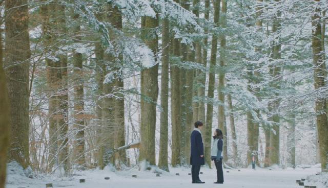 천년 숲길 전나무숲에서 촬영한 드라마 '도깨비'의 한 장면.