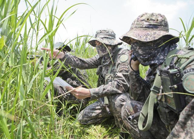 육군28사단 정찰소대 Top Team 경연대회에 참가한 정찰소대 지상정찰반 장병들이 은거 지역에서 첩보수집 활동을 하고 있다.부대 제공