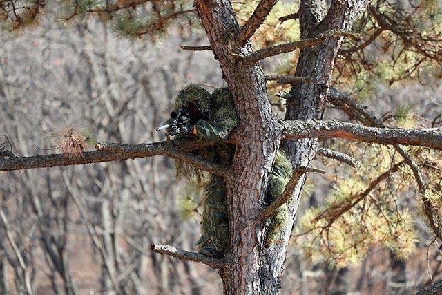 9공수특전여단 저격수가 나무 위에 올라 위장한 상태로 저격술 훈련을 하고 있다.  한재호 기자