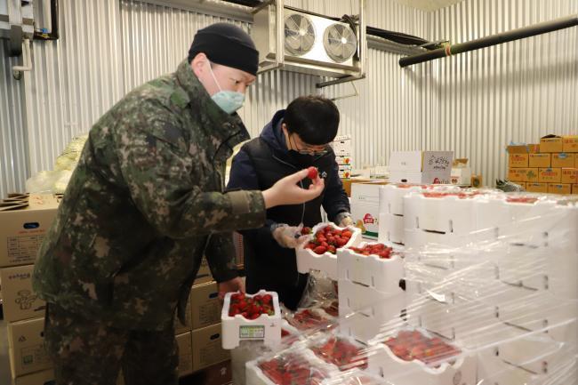 육군2작전사령부 추동욱(오른쪽) 군무주무관과 김범수 상병이 급식유통센터에 추가 구매된 딸기의 상태를 꼼꼼히 살펴보고 있다. 부대 제공